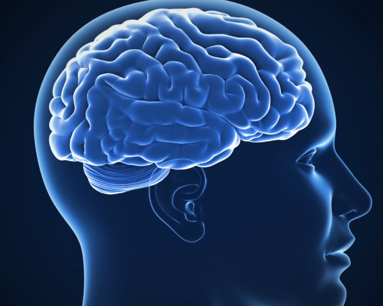 Research and the mindset. Psychology clipart brain growth