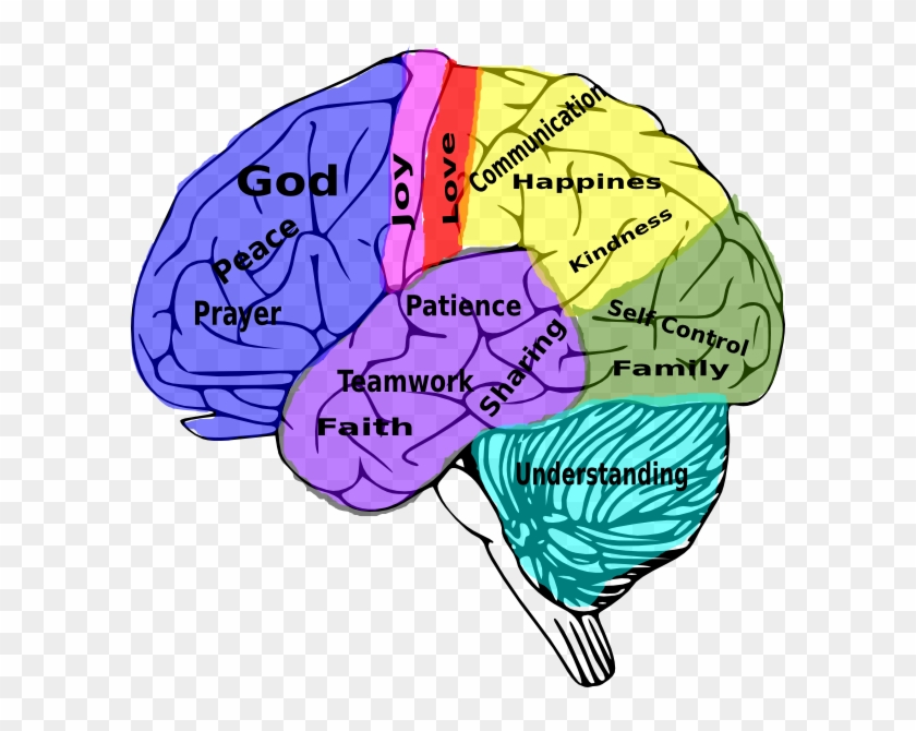 Psychology clipart cool brain. Jpg black and white