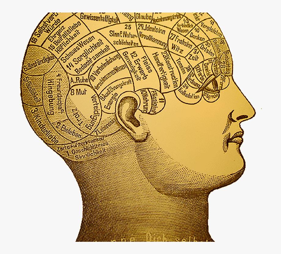 Psychology clipart decision making. Illustration cliparts