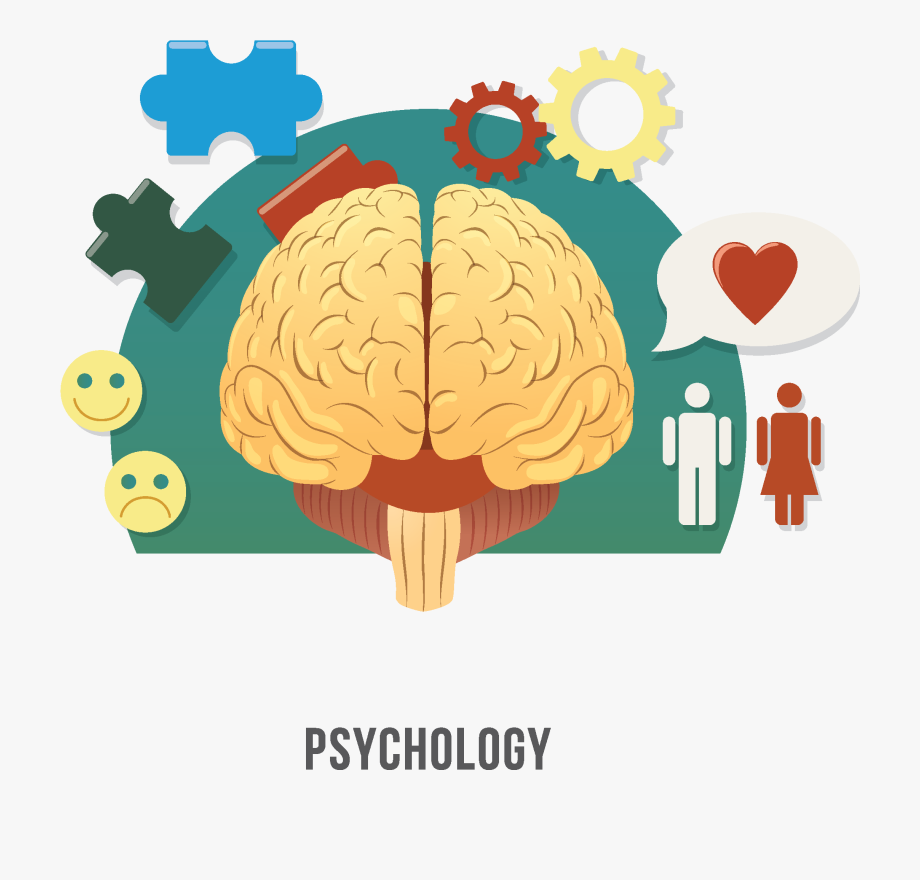 Psychology clipart psycology. Human brain clinical psychologist