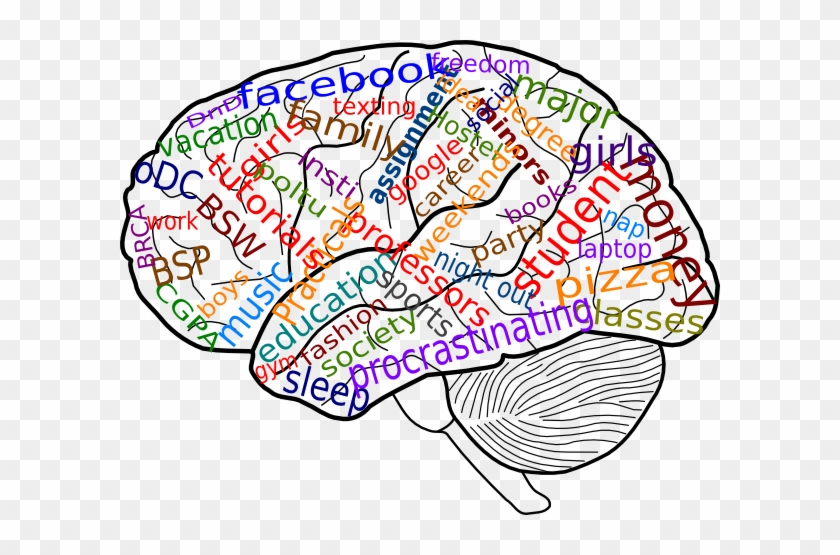 Psychology clipart transparent background psychology. Download free png your