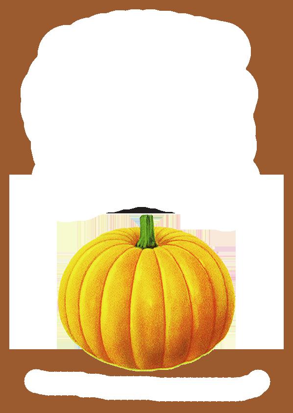 Pumpkin border png. Calabaza brown simple frame
