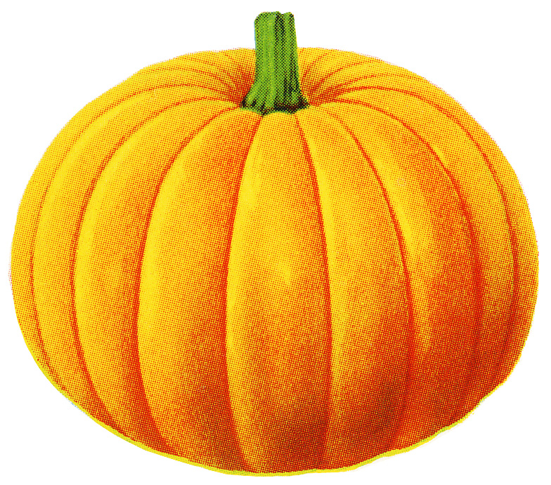 Pumpkin clipart file. Free images download clip