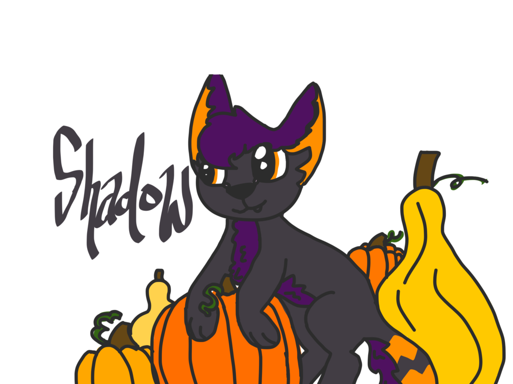 In the patch by. Pumpkin clipart shadow