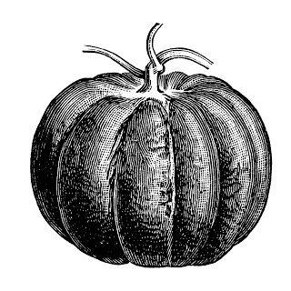 Free clip art images. Pumpkin clipart vintage