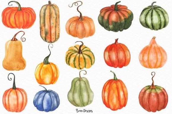 Set . Pumpkin clipart watercolor