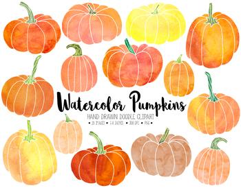 Hand drawn thanksgiving fall. Pumpkin clipart watercolor