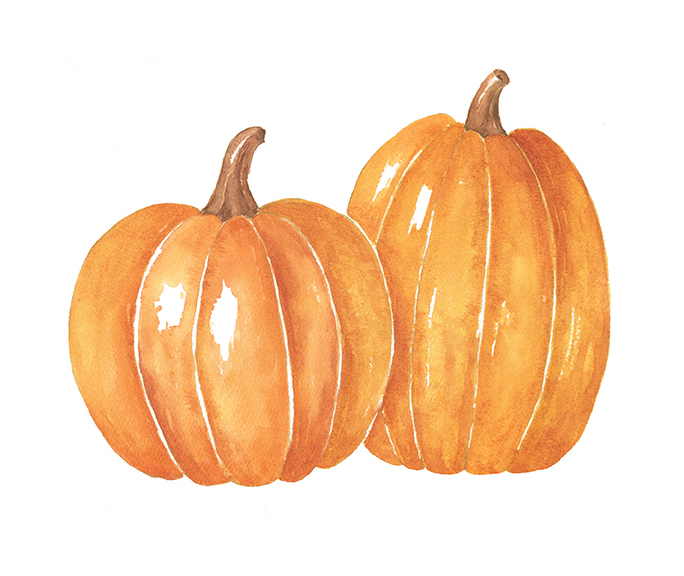 Pumpkin clipart watercolor. Pumpkins download