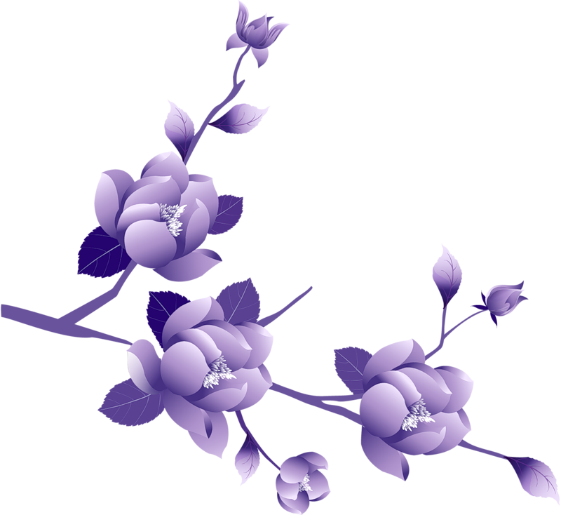 Vines clipart purple flower. Border at getdrawings com