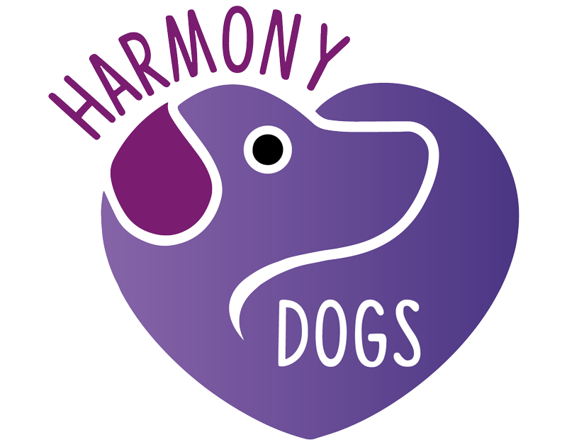 Harmony standard puppies . Purple clipart poodle