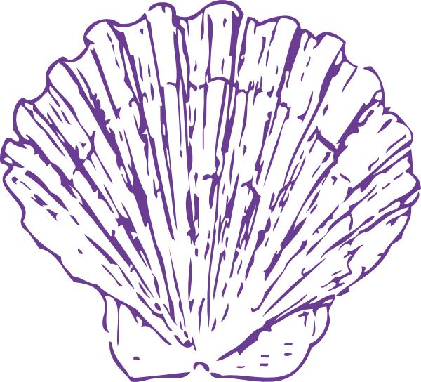 Purple clipart seashell. Sea shell clip art