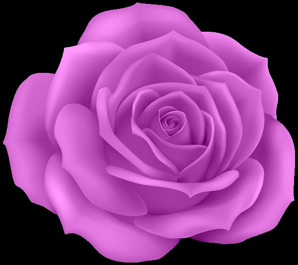 Rose clip art png. Purple clipart stiletto