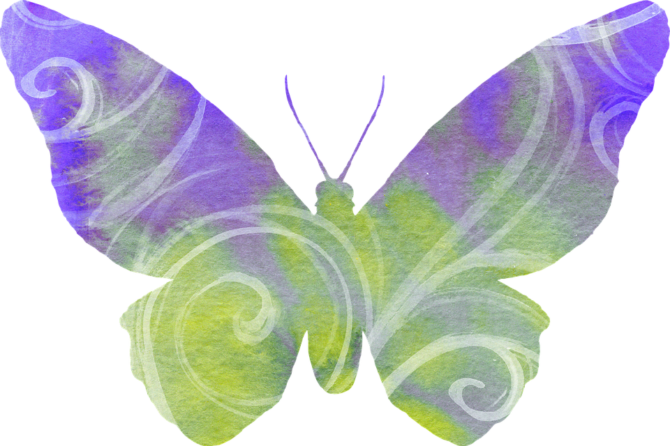 Butterfly with streamer clipartfox. Streamers clipart purple