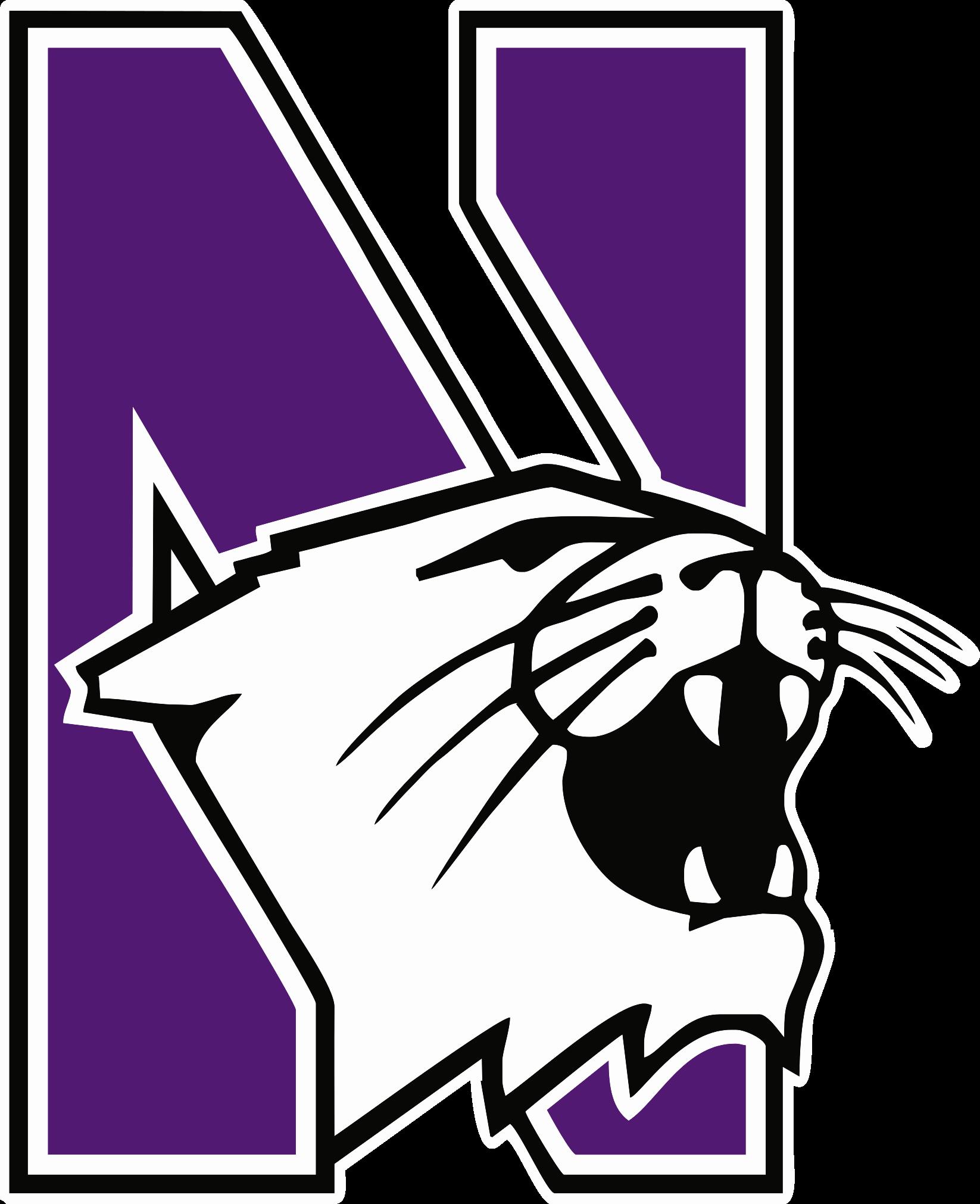 File northwestern wildcats cmky. Purple clipart wildcat