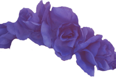 Flowers near me blue. Purple flower crown png