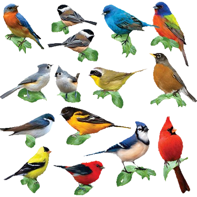 Songbirds mini shaped puzzles. Puzzle clipart individual activity