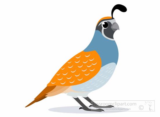 Animal bird classroom quailbirdclipartjpg. Quail clipart