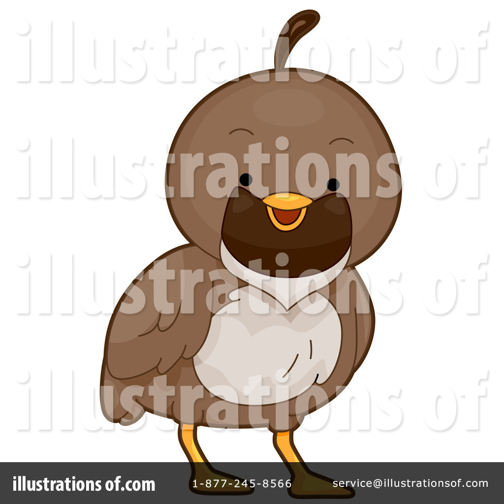 Illustration by bnp design. Quail clipart baby quail