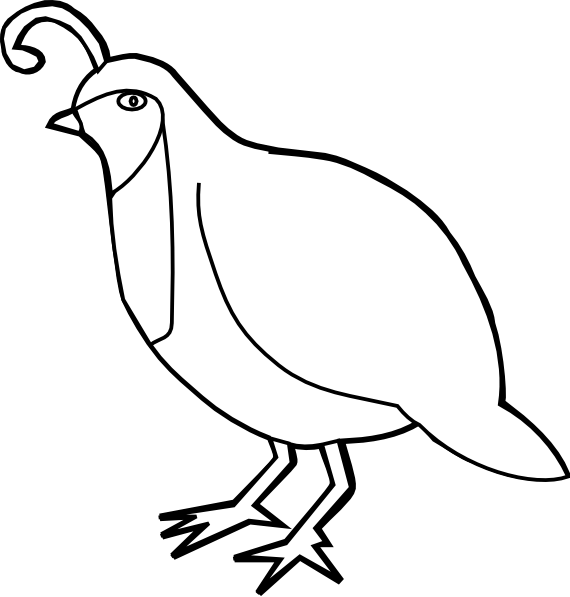 Clip art black and. Quail clipart bob white quail