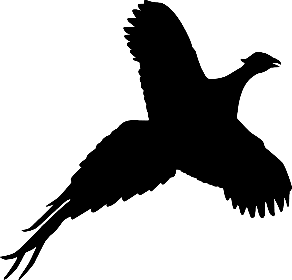 Quail clipart partridge. Silhouette at getdrawings com