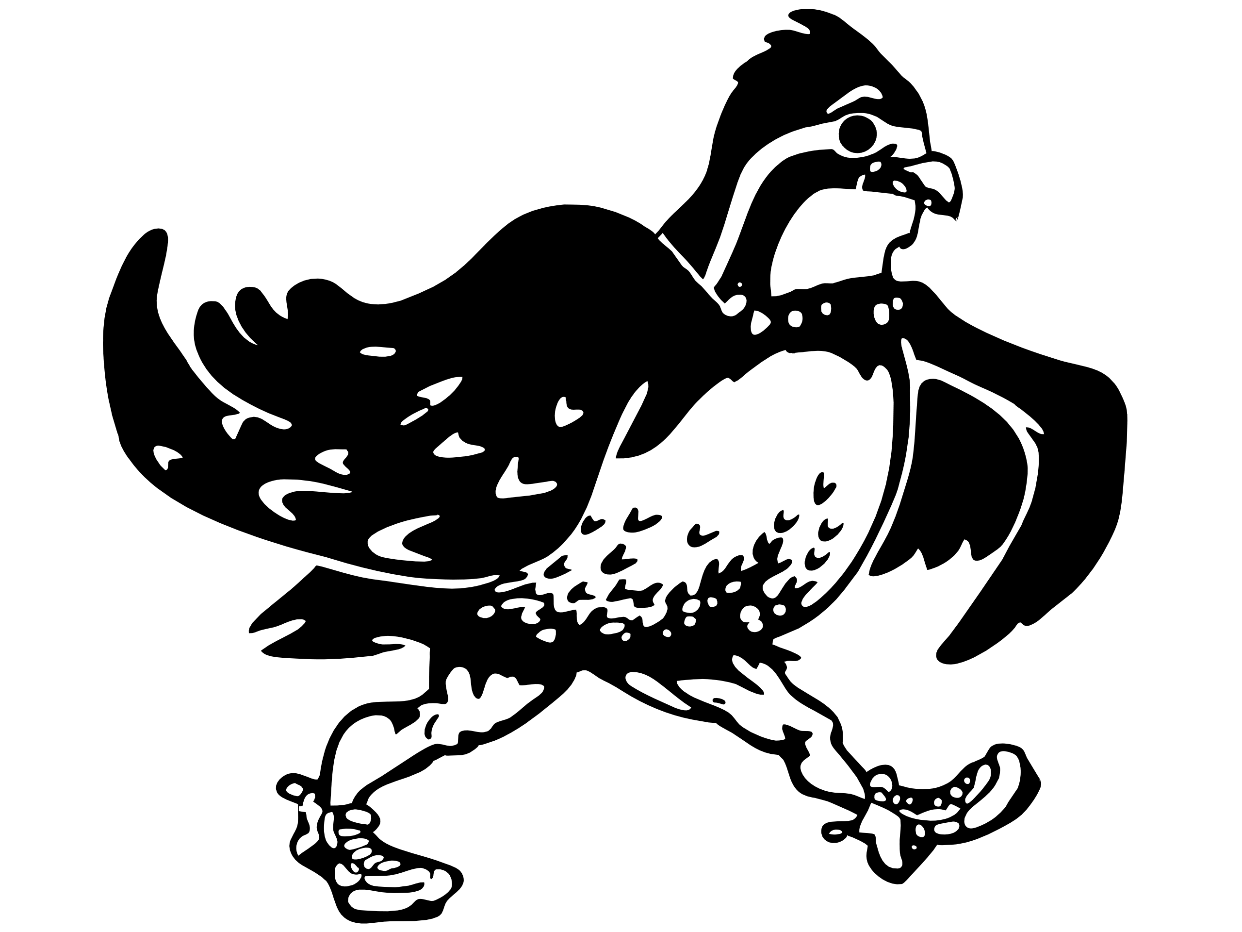 The jacob hood website. Quail clipart quail bird