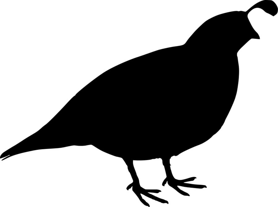 Quail clipart quial. Bird silhouette drawing