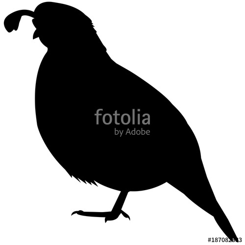 Quail clipart vector. New world silhouette graphics