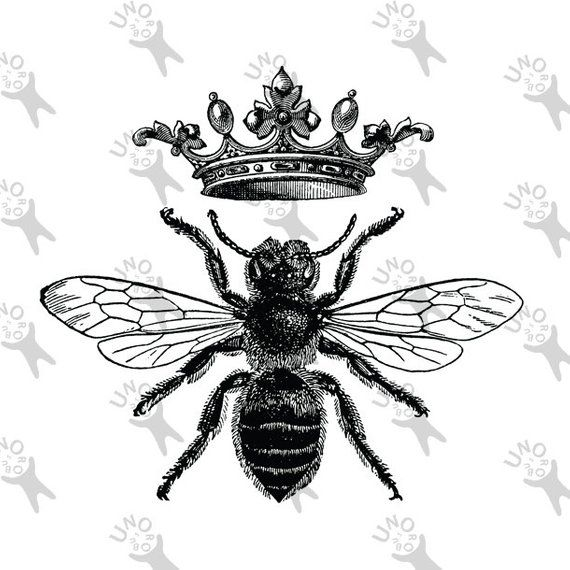 Vintage black and white. Queen clipart retro