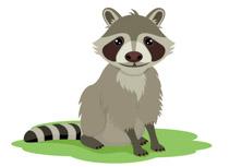 Racoon clipart. Free raccoon clip art