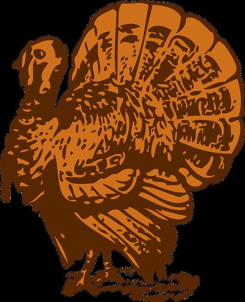 race clipart turkey