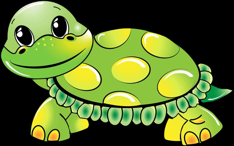Fullerton public schools mrs. Race clipart turtle