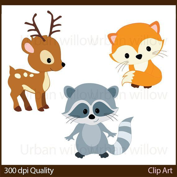 Woodland animals cli art. Racoon clipart