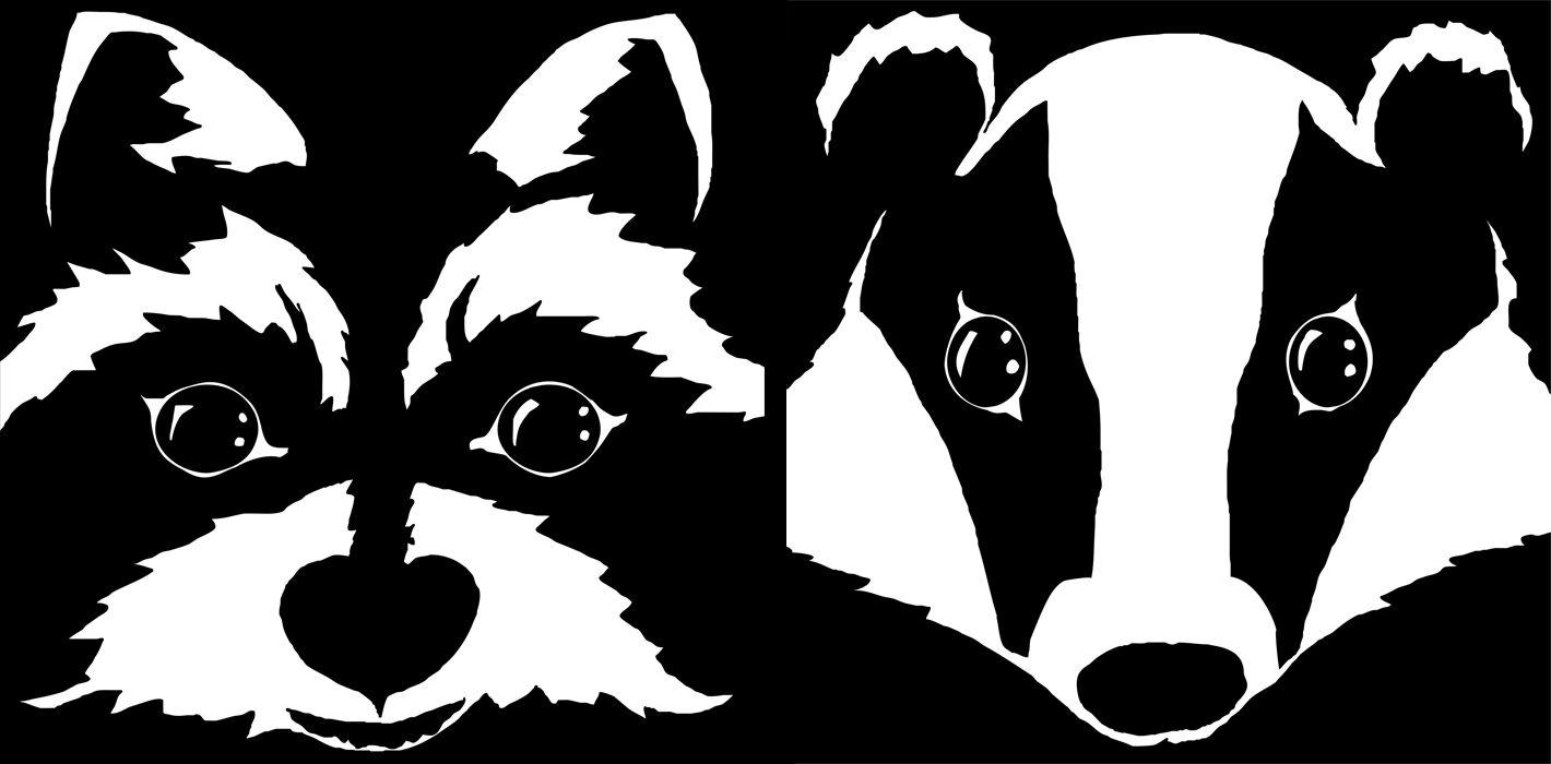 Raccoon scrollsaw in drawings. Racoon clipart badger