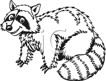 racoon clipart black and white