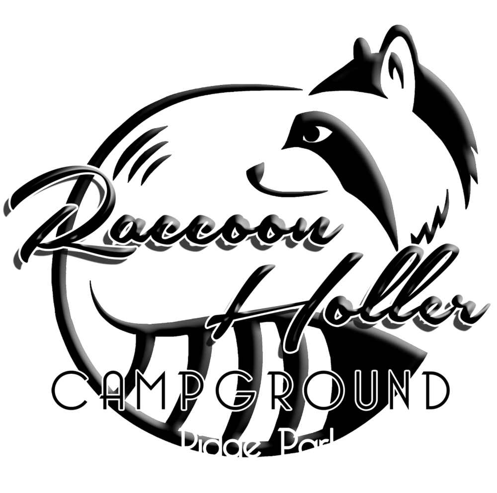 Racoon clipart black and white. Raccoon holler campground rv