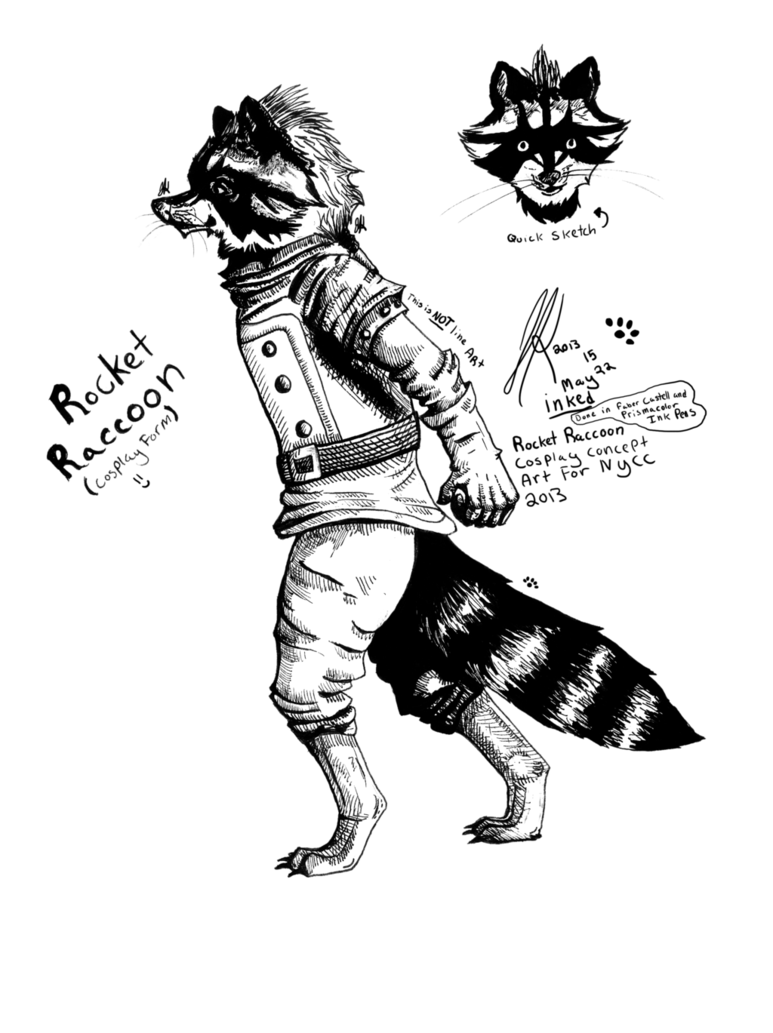 Racoon clipart chester. Raccoon line drawing at