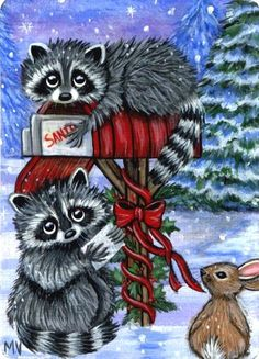 Racoon clipart christmas.  best raccoons images