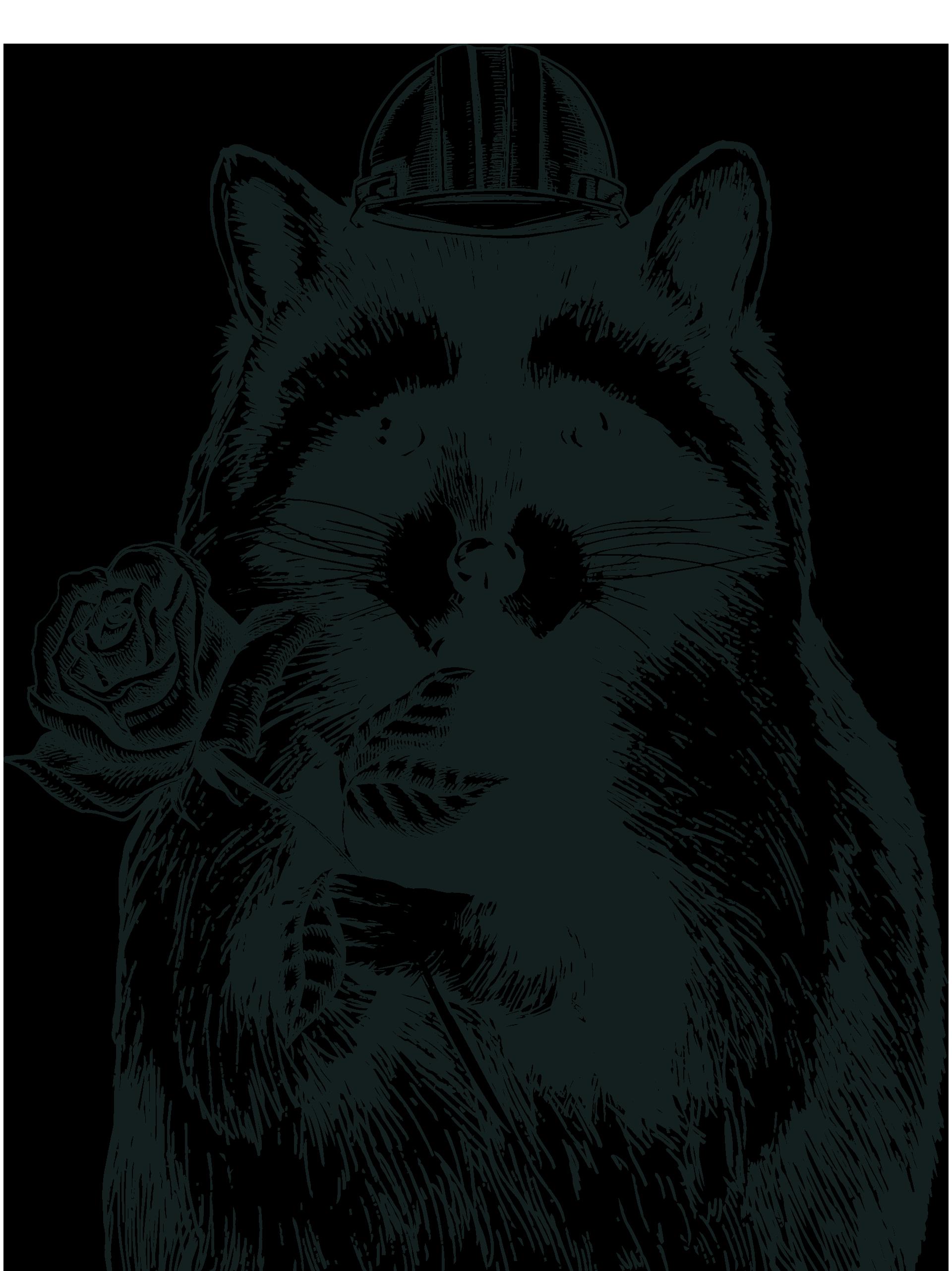 Racoon clipart gray. Denizens brewing co rebrand