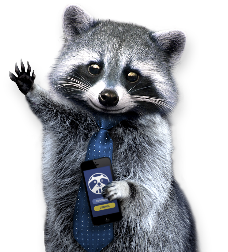 Racoon clipart gray. Raccoon png images free