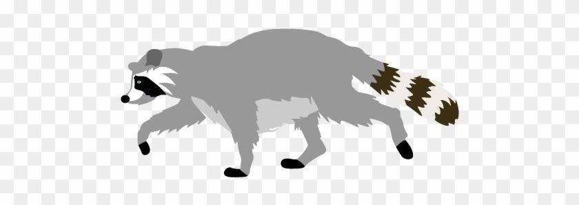 X free clip art. Racoon clipart mammal