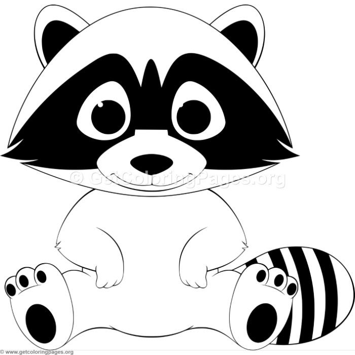 Racoon clipart outline. Pin by todos con