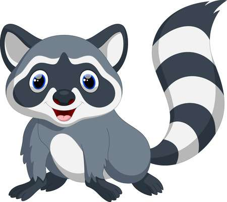 racoon clipart raccoon tail