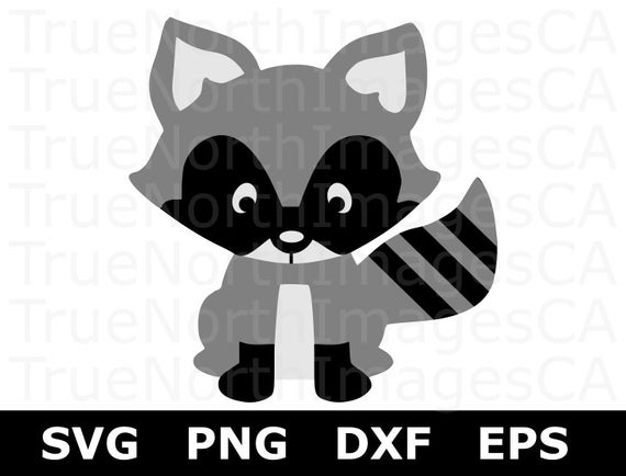 Racoon clipart svg. Raccoon files cut file