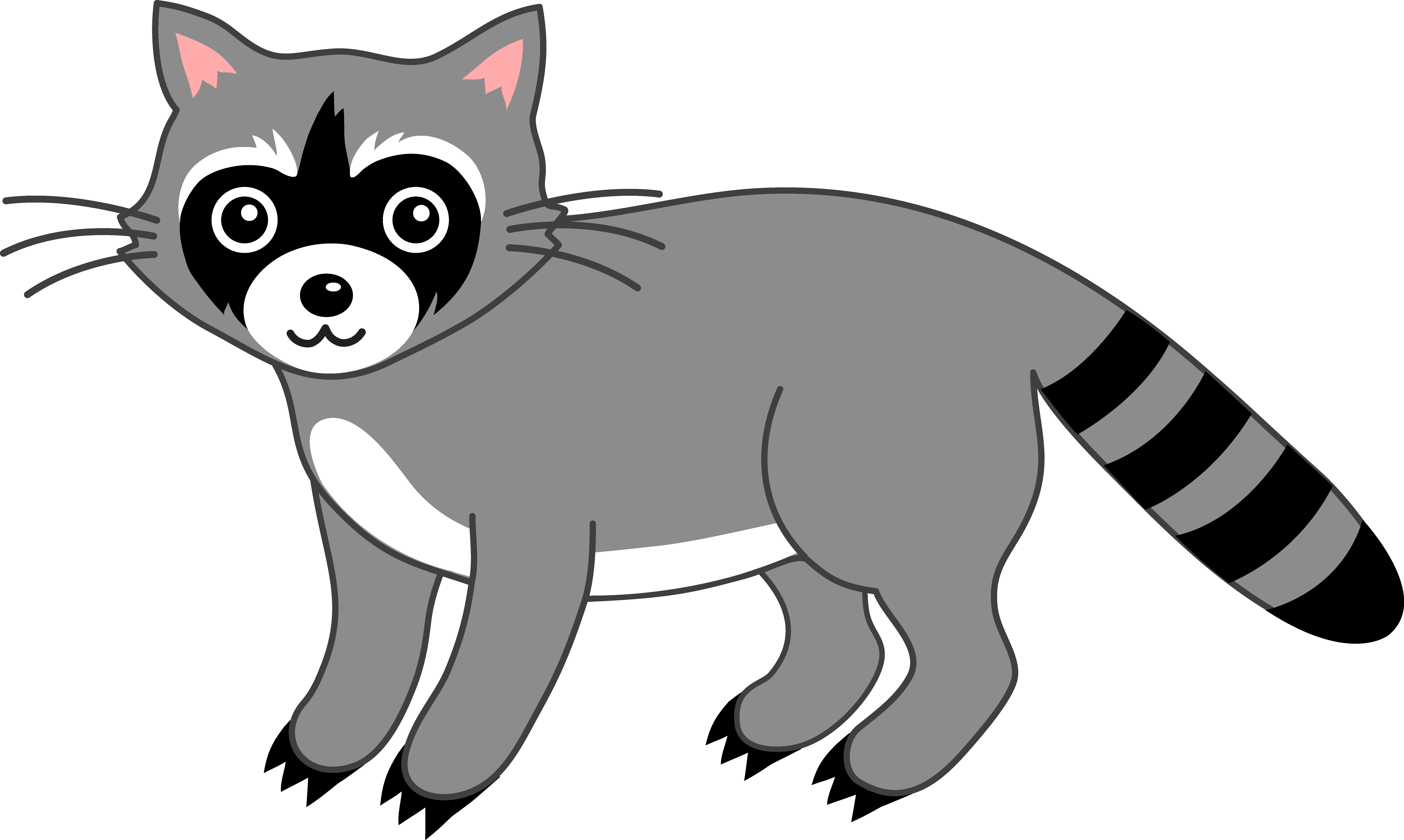 Racoon clipart. Best of raccoon design