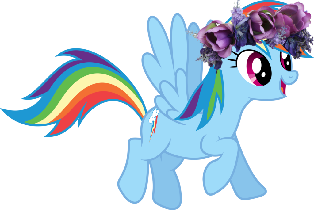Flowercrown dash by husky. Rainbow flower crown png