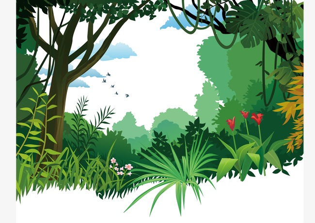 Forest poster background forestposter. Rainforest clipart