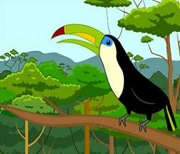 Rainforest clipart. Free