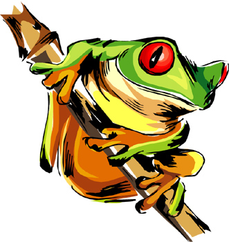 Rainforest clipart frog. Free jungle cliparts download