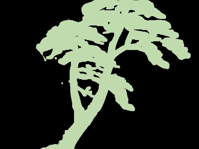 Rainforest clipart green plant. Big x dumielauxepices net