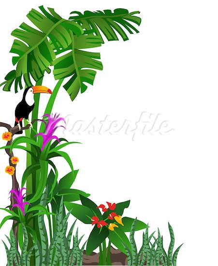 Rainforest clipart green plant. Download free clip art